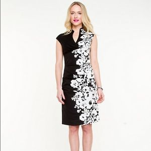 NWOT Le Chateau Placement Floral Fitted Dress